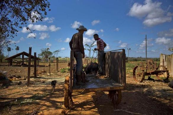 Is Cuba the future of farming? – The Boston Globe