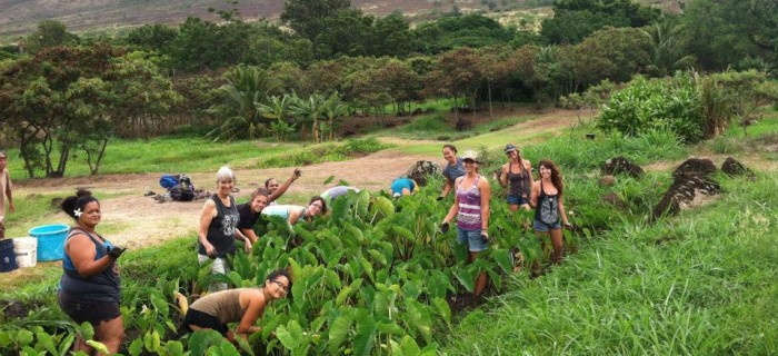 Restoring Ancestral Abundance Through Youth Empowerment in Hawai'i : Food First