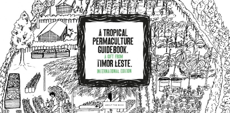 Spreading the Seed of Permaculture from Timor-Leste to the Tropical World · Global Voices