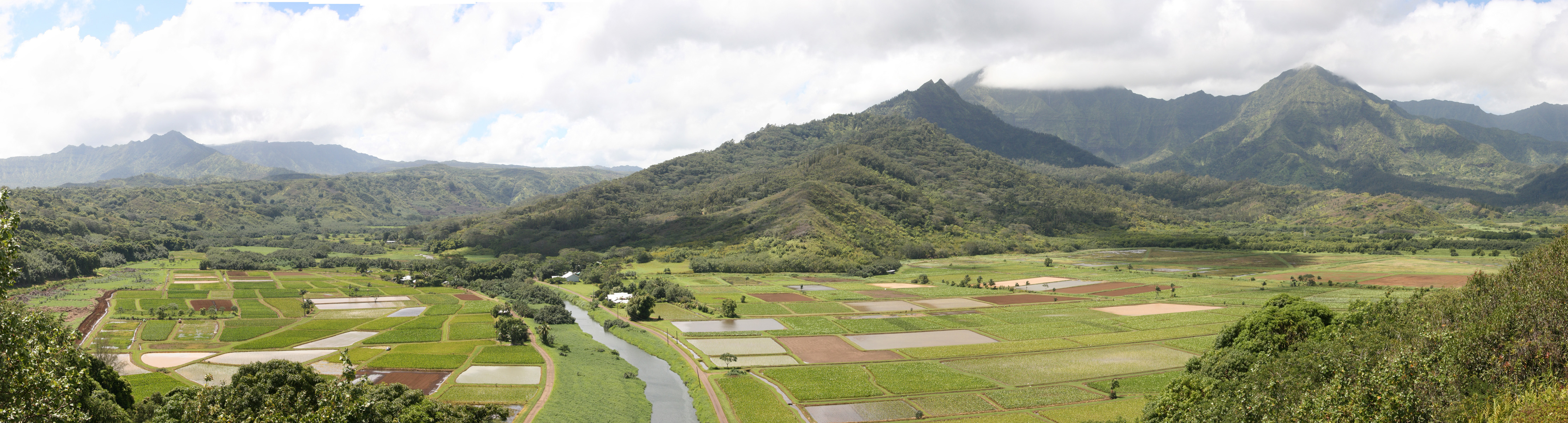 From Sugar to Monsanto: Today's occupation of Hawaii by the Agrochemical Oligopoly