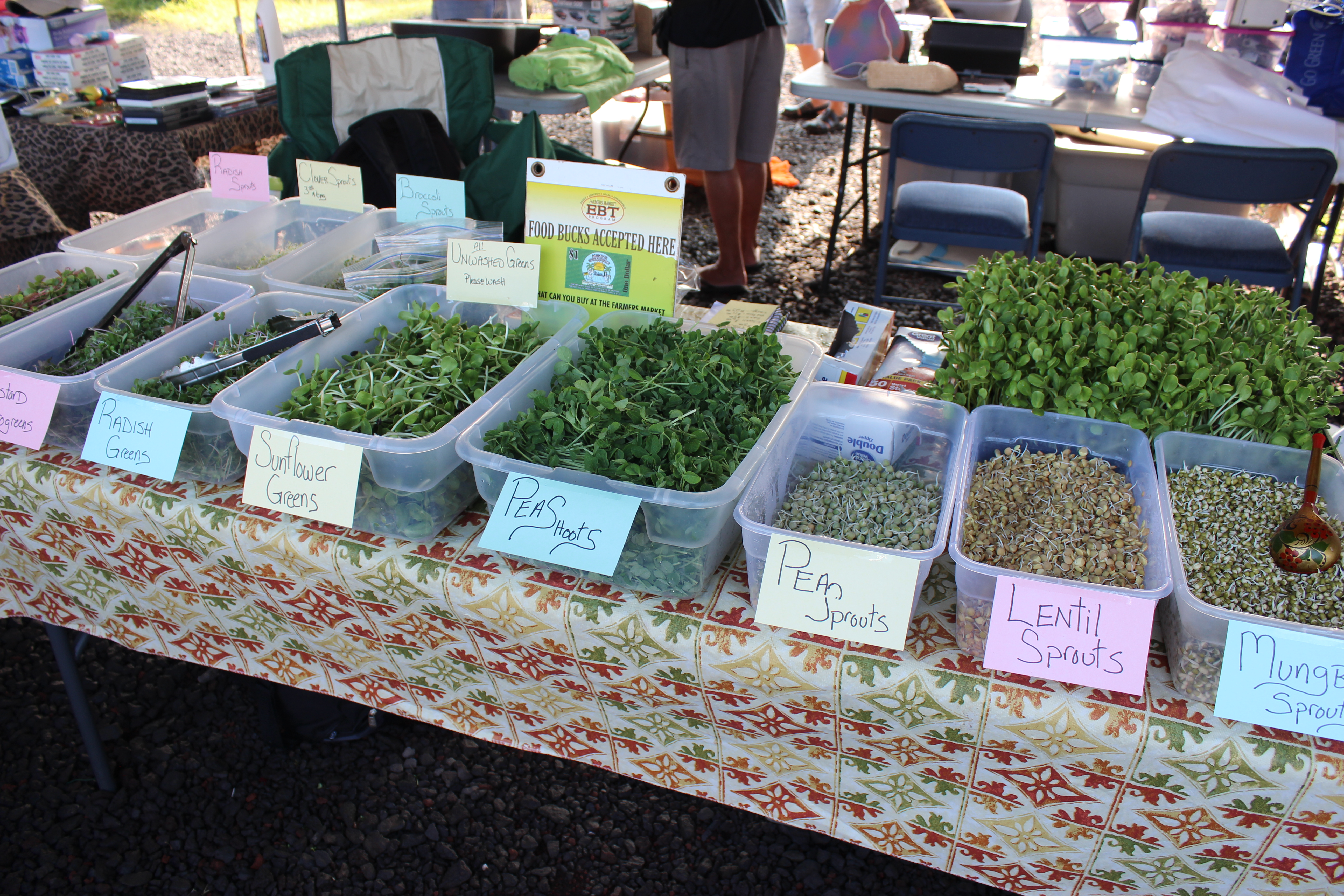 Hawaii Eco Living Sprouts And Microgreens, Where?